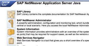 netweaver-application-home-b2b-add-on-installation-pi-po