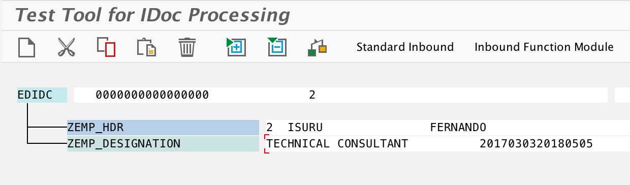Test custom iDoc Type and Process Code in we19