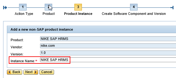Assign a d value for the Instance name of the product